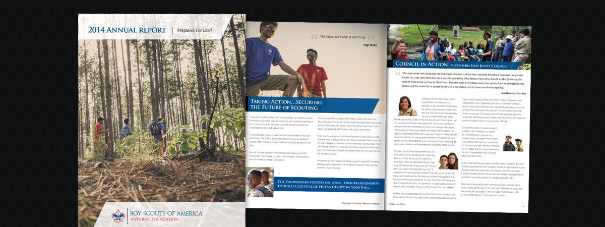 BSA Foundation Annual Report 2014