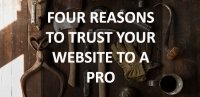 Four Reasons to Trust Your Website to Professionals